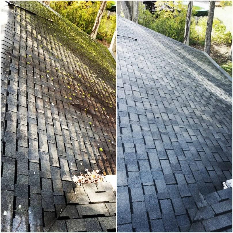 Soft washing roof
