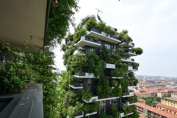 Da Milano a Londra, passando per Los Angeles e San José. I 10 progetti urbani volti a salvaguardare la vegetazione e la fauna selvatica