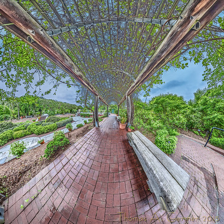 Stereographic projection from a spherical panorama taken in the Herb Garden at the National Arboretum in Washington, DC.