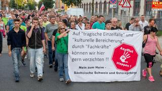 Demonstration in Heidenau. | Bildquelle: dpa