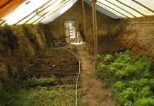 TAG Level - Winter Greenhouse - Walipini