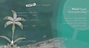 Photo of مشروع «جزيرة المملكة» غير مرخص ولا يتبع رؤية 2030