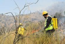 Photo of فرق الدفاع المدني بميسان تواصل إطفاء حريق اندلع بجبل عمد بمركز ثقيف
