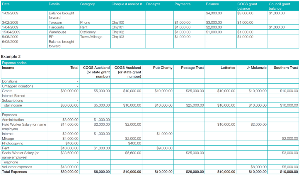 Llc Financial Statement Template and Munitynet Aotearoa  Financial Reporting