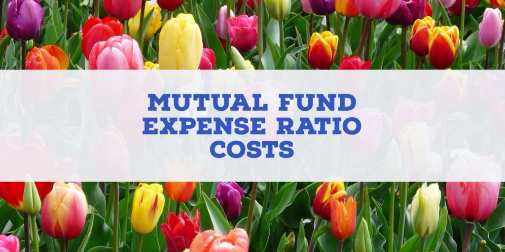 Mutual Fund Expense Ratio Example and How Much are Mutual Fund Expense Ratio Costs Investormint