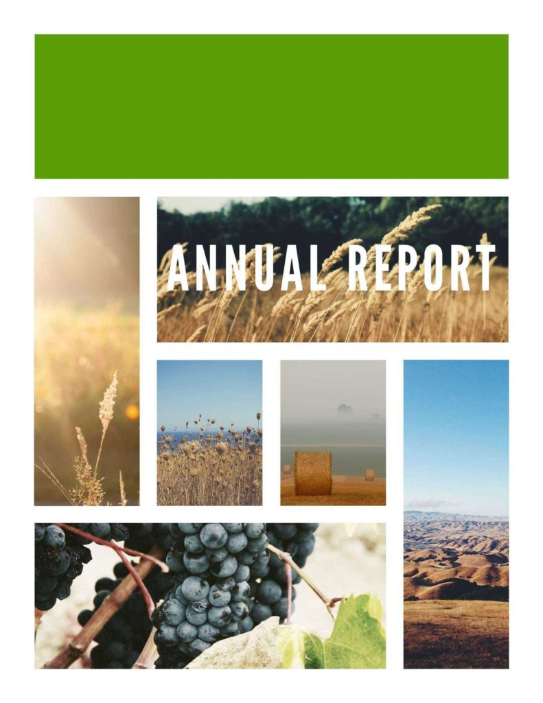 Sample Of Financial Report and Free Annual Report Templates Examples 6 Free Templates