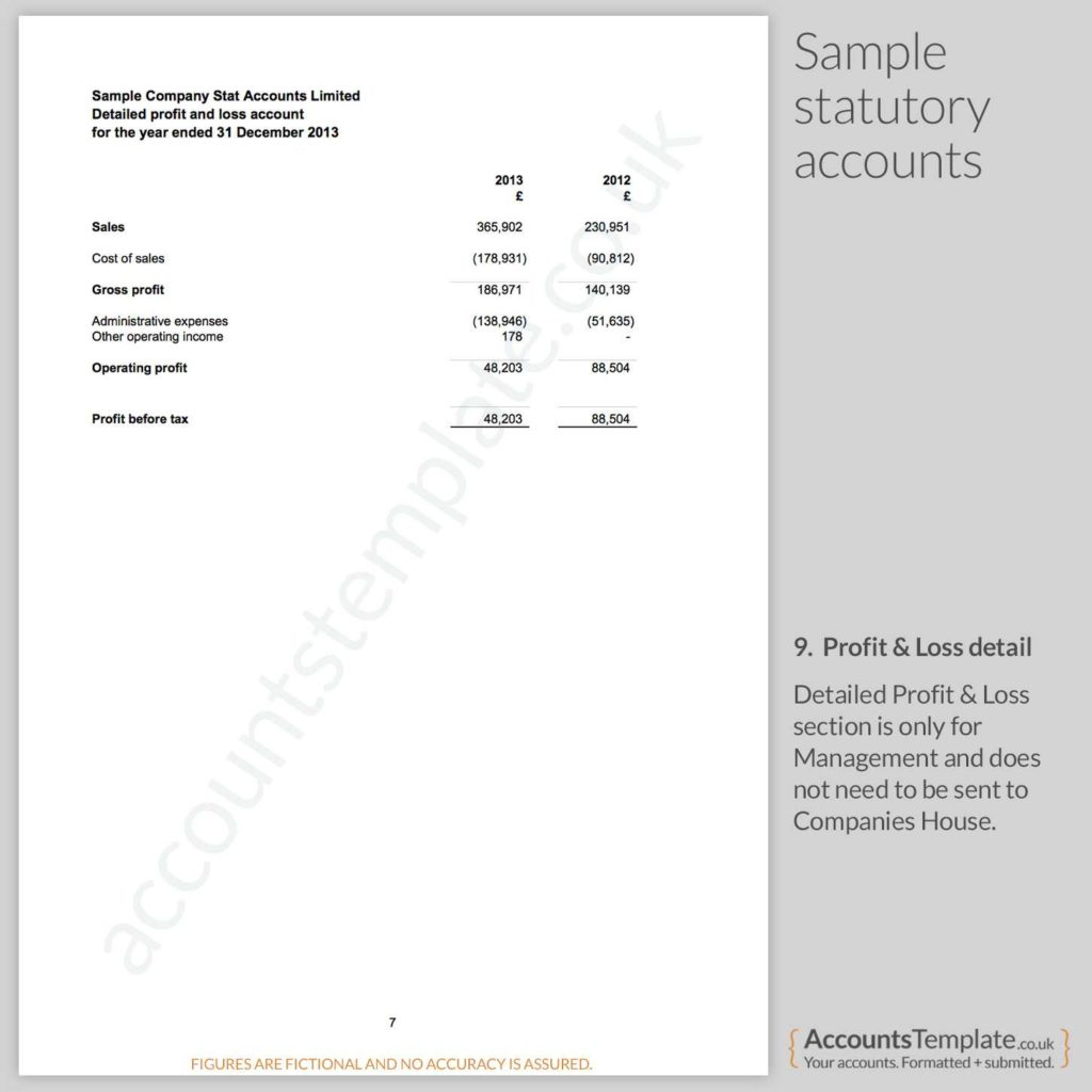Samples Of Profit and Loss Statements and A Guide to the Statutory Accounts format Accounts Template