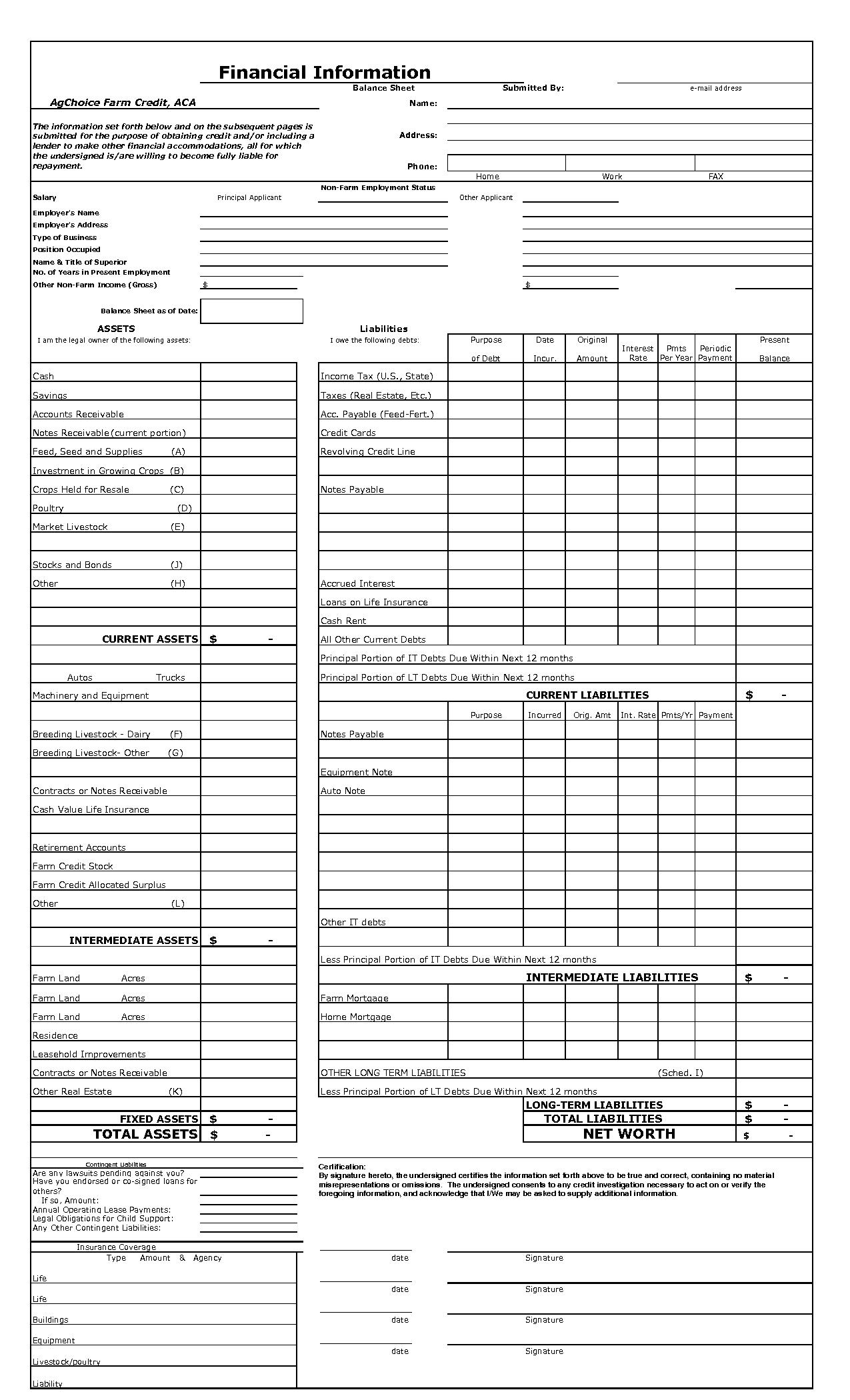 Template for A Balance Sheet and Blank Balance Sheet Template Selimtd