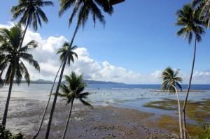 East Taveuni