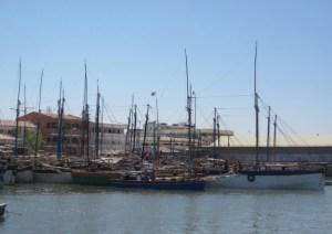Mahajanga harbor