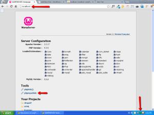 How to install WordPress locally with WAMP Server on Windows PC?