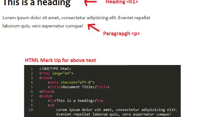 HTML Tutorial beginner