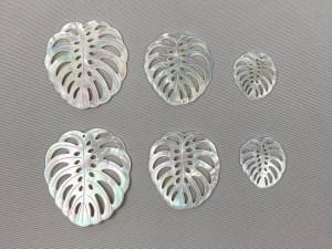 Monstera Deliciosa Variegata Albo Leaf White MOP Loose Piece - Per Pair