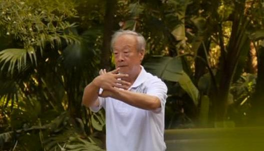 Tui Shou