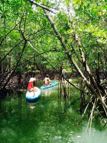 Irklenčių turas po mangruves koh lanta saloje
