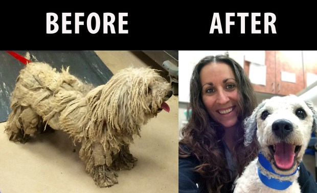 Before & After 2