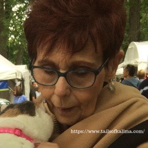 Cat Therapy At The Arts And Apples Festival