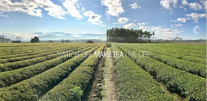 Switch Off Make Tea Life Life