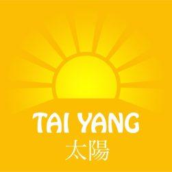 Äntligen en Hemsida - Tai Yang Akupunktur