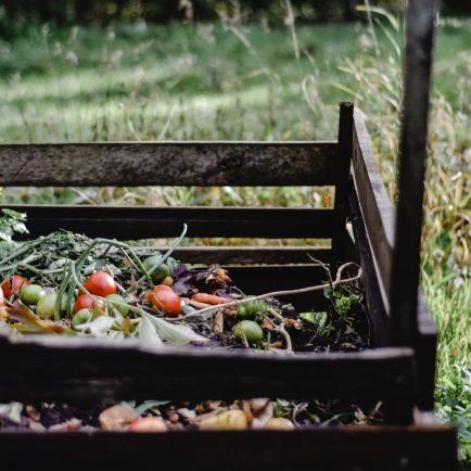 Compost - red and green fruits on brown wooden bench