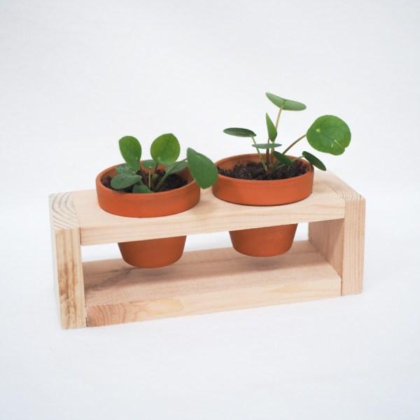 Plantenrekje - 2 potjes