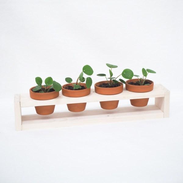 Plantenrekje - 4 potjes