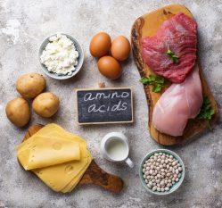 タンパク質の多い食材が並べられている様子。米・ジャガ芋・チーズ・卵・牛乳・大豆・鶏肉・牛肉・イタリアンパセリとアミノ酸と書かれた小さい黒板。