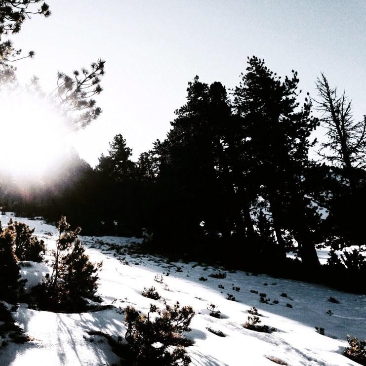 PHOTO MOUNTAIN
