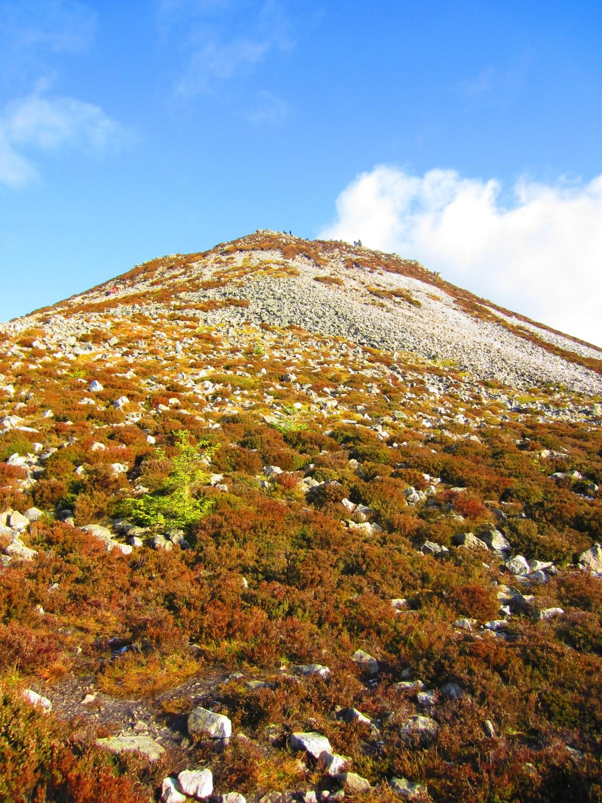 Great Sugar Loaf Climb (Short Route)