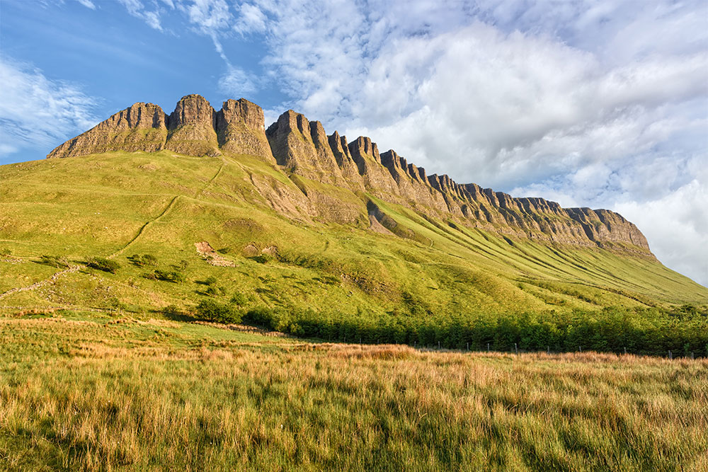 Benbulben Forest Walk