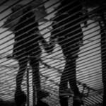 白日夢(はくちゅうむ)