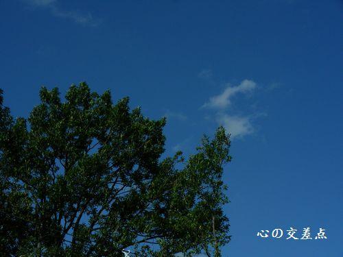晴天のブルース