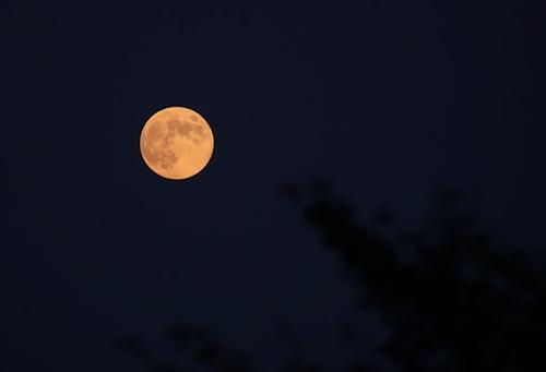 中秋の夜空を見上げて