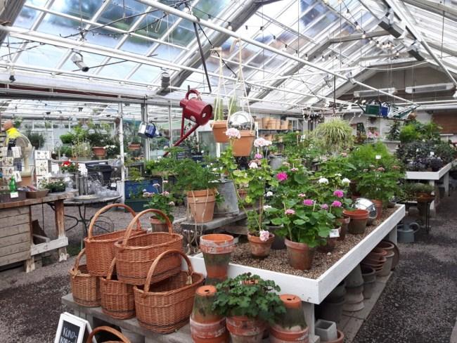 Tuinwinkel Rosendals Trädgård
