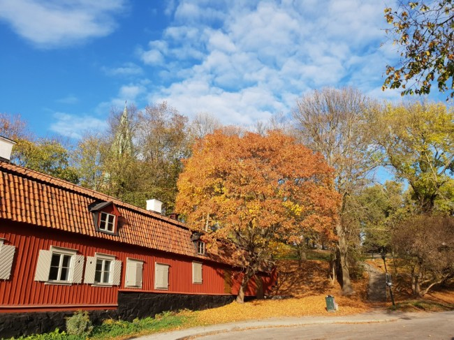 Herfst in Vitabergsparken, Stockholm - arbeidershuisjes