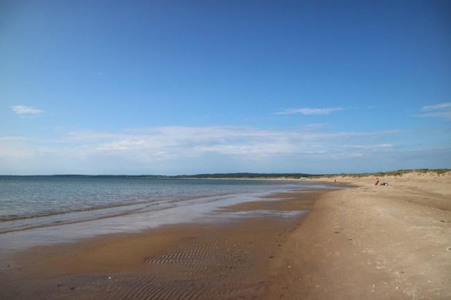 Het strand van Tylösand, een van de mooiste van Zweden