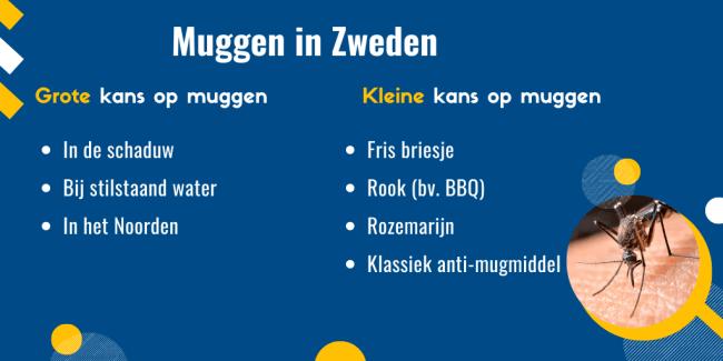 muggen in Zweden