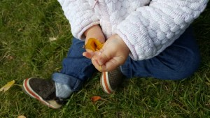 The relationship between outdoor exploration in babies and food aversion in toddlers