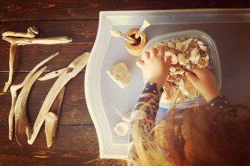 Learn how to foster an appreciation for nature with these easy indoor nature activities.
