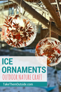 Making these was an easy outdoor winter activity or nature craft. | #naturecraft #ornaments #ice #kidscraft #outdoorcraft