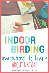 Invite learning with an indoor birdwatching sit spot for your kids | #natureactivities #birdwatching #kidsactivities #birds