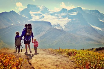 Wilcox Pass in Jasper National Park is a rewarding family hike with amazing views of the Athabasca Glacier