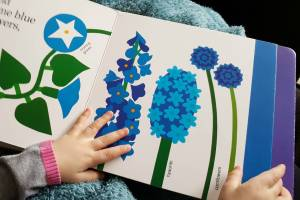 toddler hands holding open a colorful children's book about flowers. This is one of the recommended kids books about spring.
