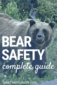 A grizzly bear, text reads bear safety complete guide