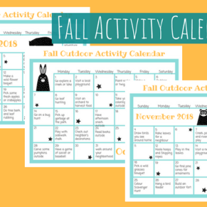 image of 3 fall activity calendars