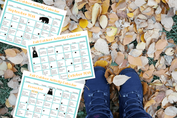 image of 3 monthly calendars on a background of autumn leaves
