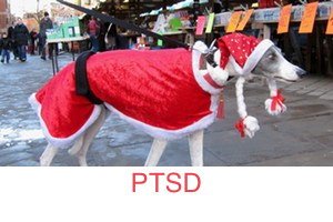 ptsd_dog_300x200_STRIPE