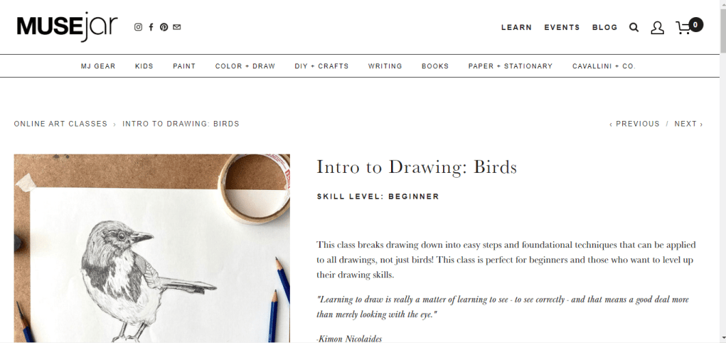 Intro to Drawing: Birds (MUSEjar)
