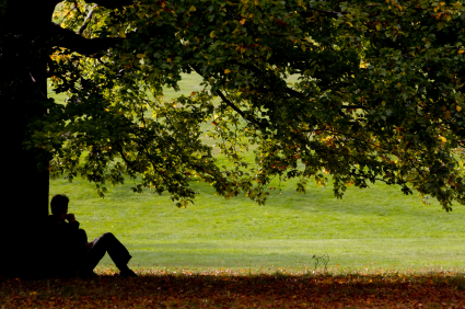 man sitting beside tree in beautiful park.