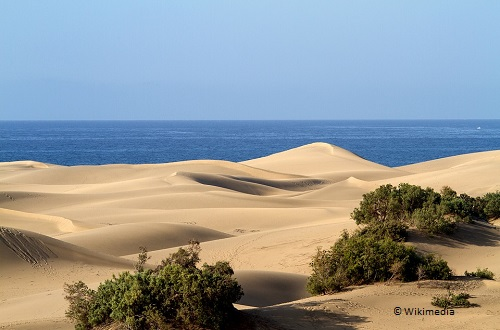 what to do in gran canaria mas palomas sand dunes takingtotheopenroad peggytee pixabay